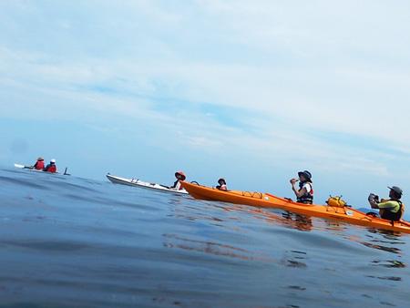 シーズンは春~夏。穏やかな瀬戸内海の風景を存分に味わえます。