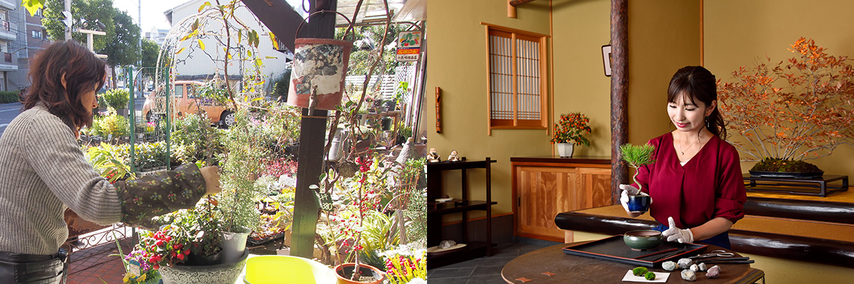 フラワーガーデン花崎+花澤明春園イメージ写真